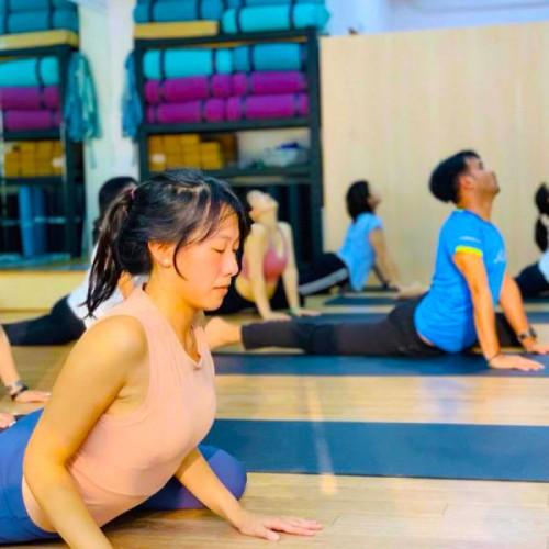 流動哈達瑜伽
